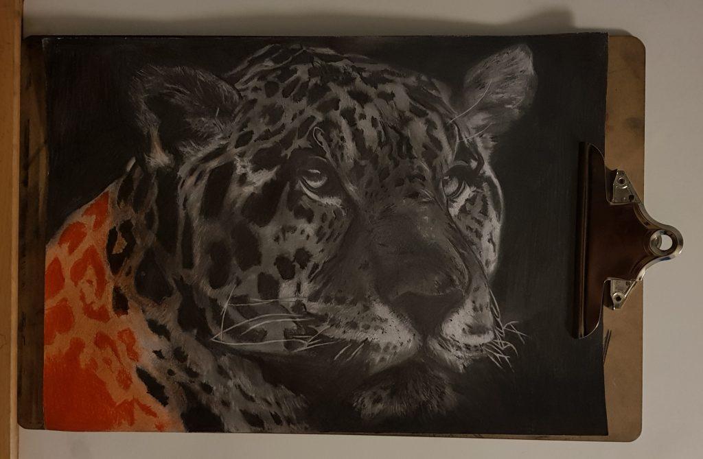 Jaguar ALYART