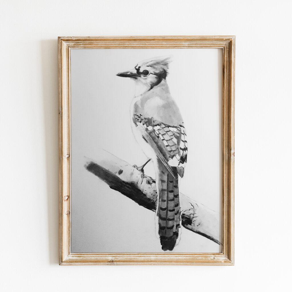 ALYART Blue Jay